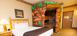 Bedbugs Found in Great Wolf Lodge